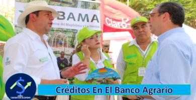 ➡ Créditos En El Banco Agrario De Colombia